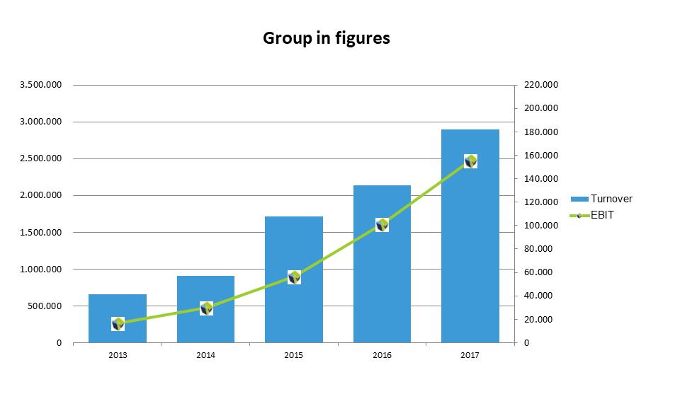 Group-in-figures-NTG-2017_1